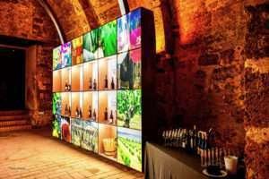 Museo del Vino en el Monasterio de Piedra