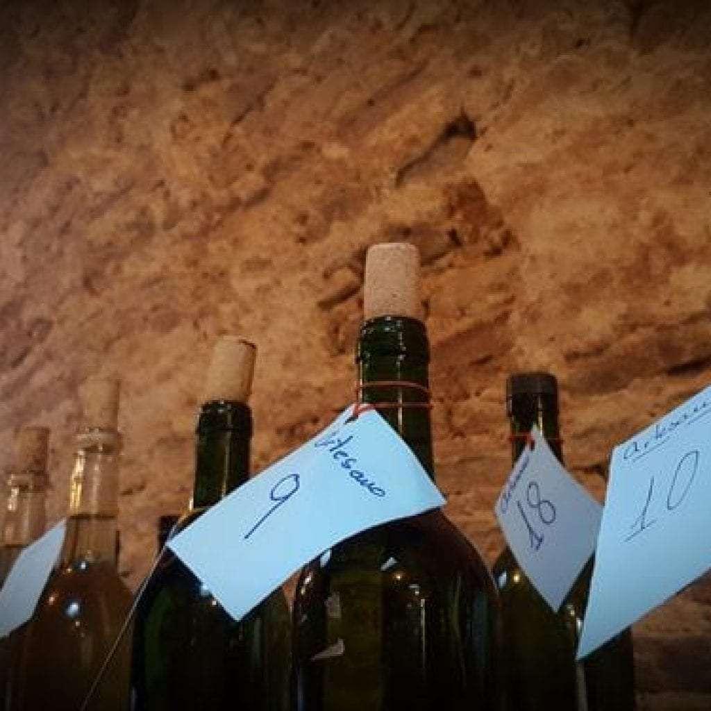 Sanlucar,Mejores vinos del año