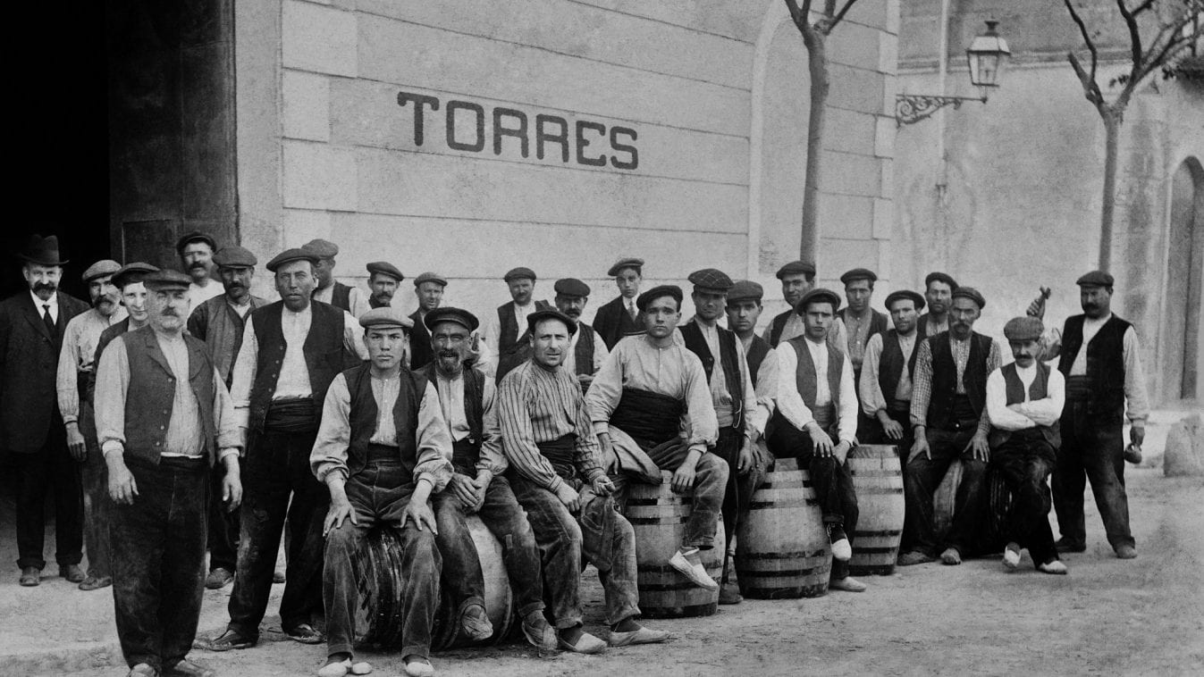 Familia Torres cumple 150 años como bodega familiar de prestigio internacional