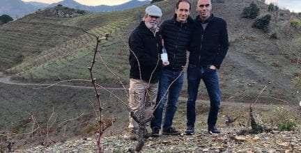 Familia Torres lanza su vino más exclusivo: Mas de la Rosa 2016 de la DOQ Priorat