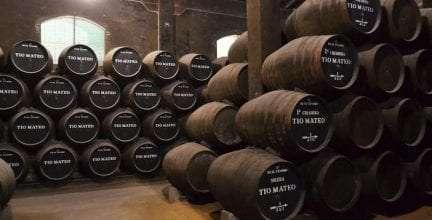 José Estévez, S.A., fue la primera bodega en lanzar un vino bajo en histamina