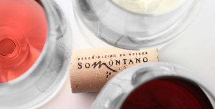 Enoturismo de invierno para vivir en primera persona los valores del vino D.O. Somontano